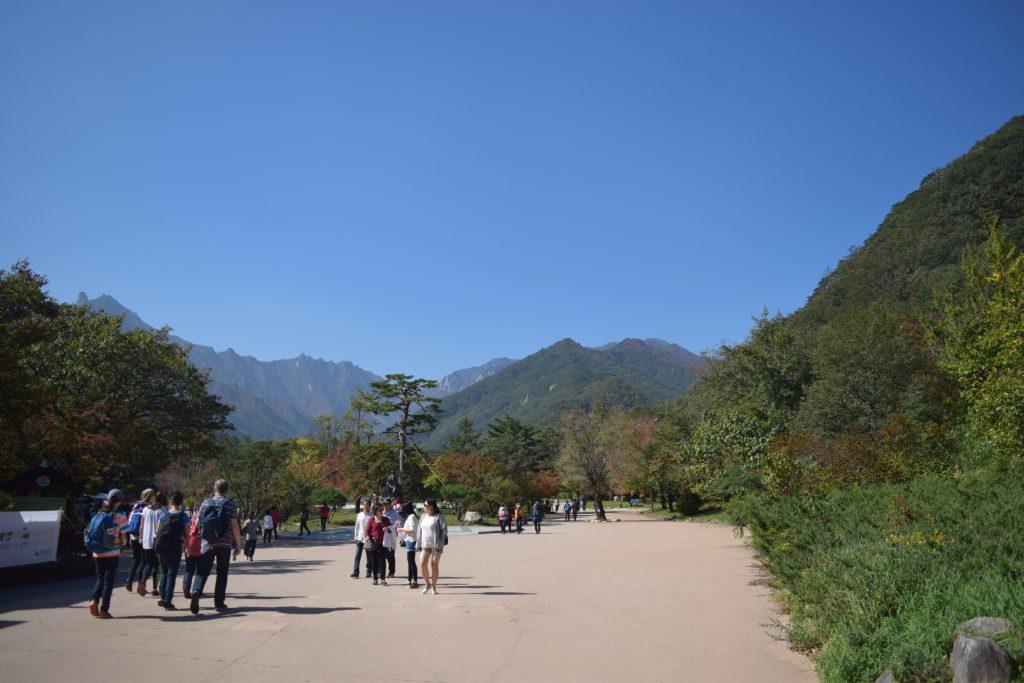 entrance_view