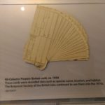 Punched Cards that were used for Survey