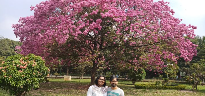 in beautiful Cubbon Park, Nov 2018