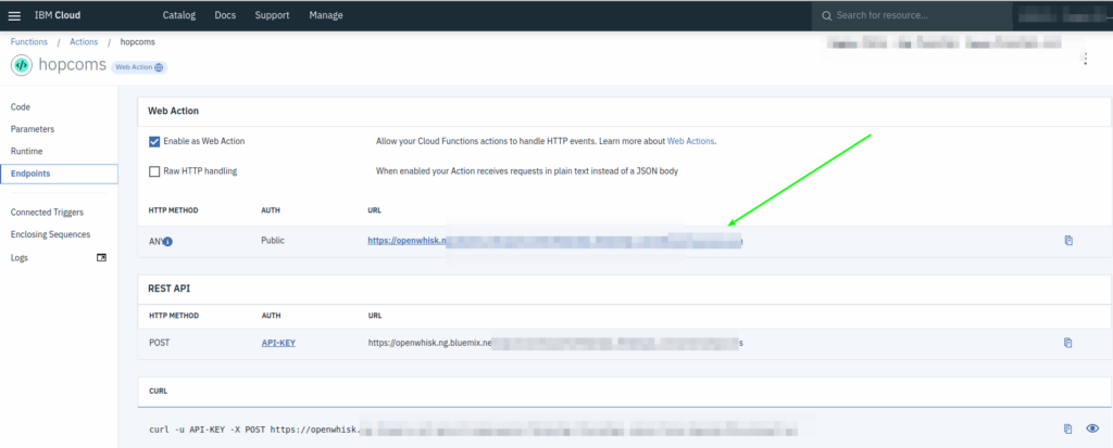 OpenWhisk get web endpoint URL
