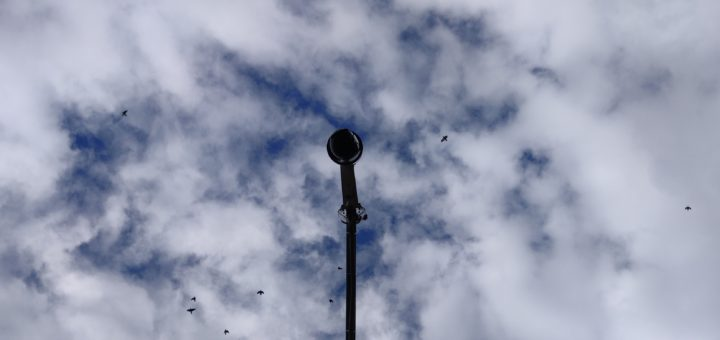 Public CCTV Camera at Cubbon Park, By Yashodhara Udupa