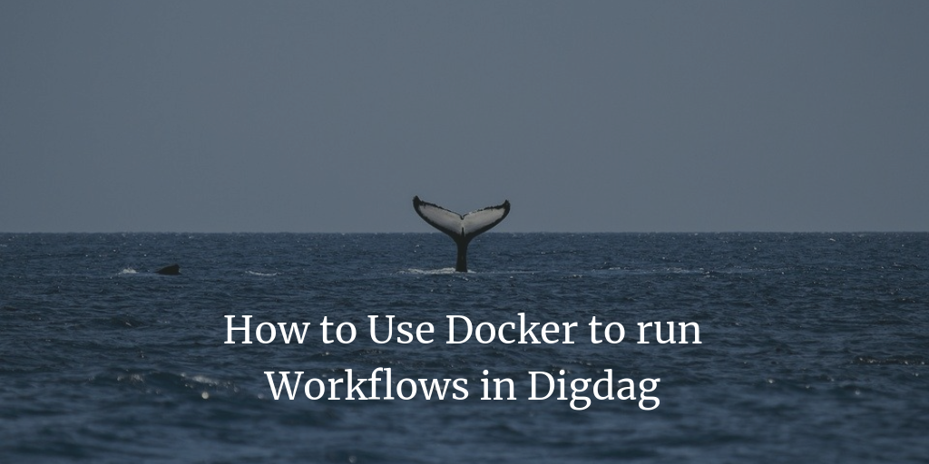 How to Use Docker to run Workflows in Digdag